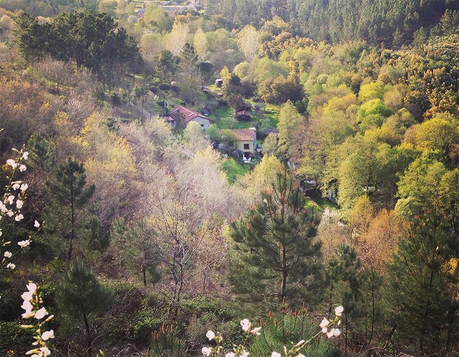 View on Moinhos do Dão early spring.
