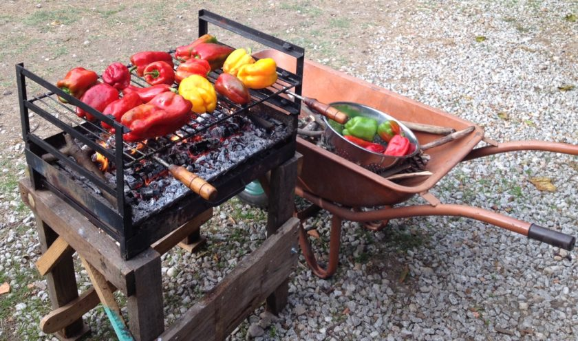 Grilling peppers for a pickling project.